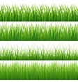 Green seamless grass set vector image