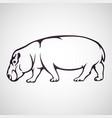 hippo logo icon vector image vector image