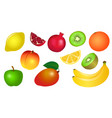 set of of yellow red green fruits vector image