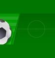 soccer or european football green field vector image vector image