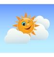 Winking sun vector image