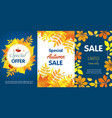 autumn sale banner set flat style vector image vector image