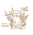 beer comp mug brown vector image vector image