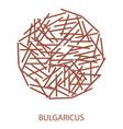 bulgaricus icon probiotic concept logo and label vector image vector image