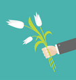 businessman hand holding bouquet white tulip vector image vector image