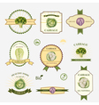 Cabbage set of label design vector image vector image