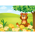 Cartoon Honey Bear vector image vector image