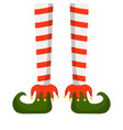 christmas elf legs in striped stockings vector image vector image