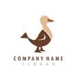 duck logo vector image vector image