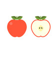 front and back view red apple half fruit vector image vector image