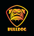 head bulldog vector image vector image