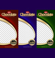 packaging set chocolate bar vector image vector image