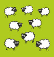 pasture with green grass and sheeps vector image