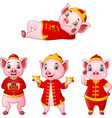 set of cartoon pig with traditional chinese costum vector image