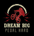 bicycle label t-shirt design with custom vector image