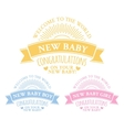 Blue and pink badges for newborn vector image