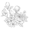floral bouquet on white background vector image vector image