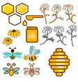 honeybee and flowers apiary icon set vector image vector image