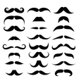 Huge set of mustache