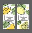 lemon mango design sticker sketch vector image