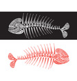 skeleton of fish vector image vector image