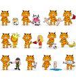 tiger's zodiac vector image