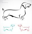 Dachshund Dog vector image