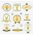 Corn set of label design vector image