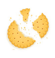 delicious round biscuit vector image vector image