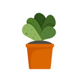 house cacti pot icon flat style vector image vector image