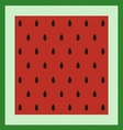 Pattern with watermelon surface vector image vector image