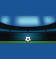soccer ball on green stadium in night vector image