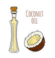 colorful hand drawn coconut oil bottle vector image
