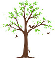 beautiful tree branch with birds vector image vector image