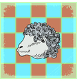 vintage grunge background with sheep vector image vector image