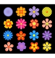 Set of floral elements and blossoms vector image