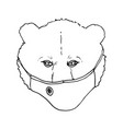 a bear in protective medical mask