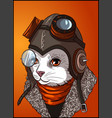 aviator cat with glasses monocle wool jacket vector image vector image