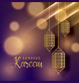 beautiful hanging lamps for ramadan kareem season vector image vector image