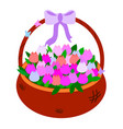 brown wicker basket with tulips of pink shades vector image