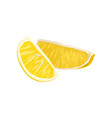 composition with two little slices of lemon juice vector image vector image