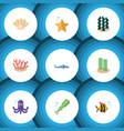flat icon marine set of alga tentacle shark and vector image vector image