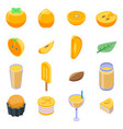 persimmon icons set isometric style vector image vector image