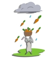 Rain for hare vector image vector image