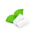 two chewing gum and mint leaf vector image