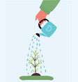 watering plant with watering can vector image vector image