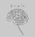 brain doodle hand drawn vector image