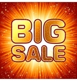 Big sale message vector image vector image