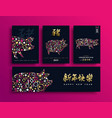 chinese new year of the pig 2019 gold hog card set vector image