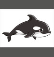 cute grampus whale on a white background in vector image